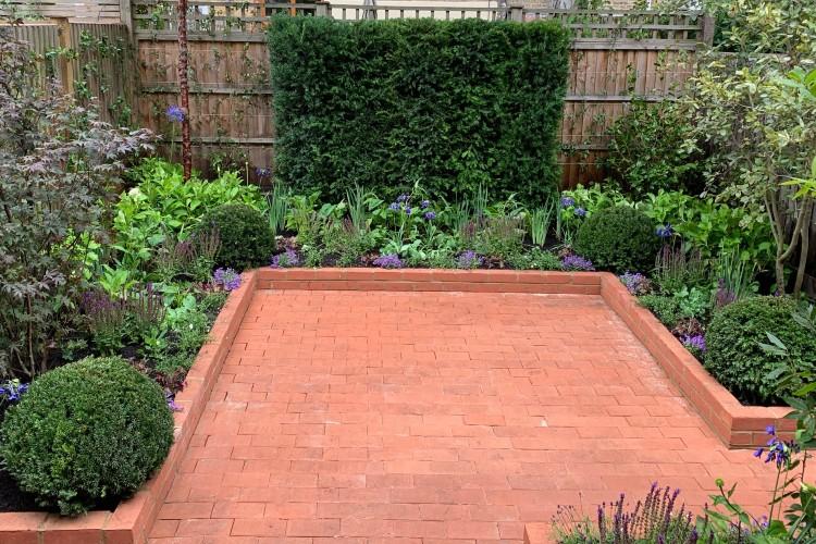 Latest Garden – Urban Garden Clapham SW4