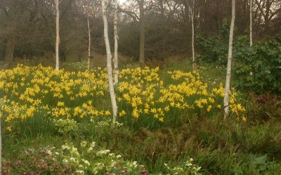 March News – Spring is here